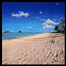 Best Beaches Lanikai Beach by Bill Braden Oil ~ 30 inches x 30 inches