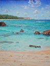 """Turtle Bay, Keiki Beach"" by Bill Braden Oil ~ 2 feet x 3 feet"