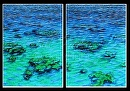 """Cross Swell"" by Bill Braden Oil ~ (2) @ 2 feet x 3 feet"