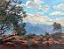 Pinon trees from Navajo Point by Alain Lutz