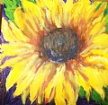 Sunflower by Linda Holmes Oil ~ 5 x 5
