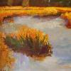 Marsh  Awakening