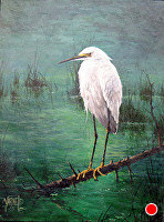 Out on a Limb (Egret) by Joseph Yarnell Acrylic ~ 12 x 16