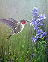 Precision (Ruby-Throated Humming Bird) by Joseph Yarnell Acrylic ~ 12 x 6