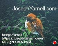 by Joseph Yarnell Acrylic ~ 8 x 10