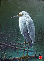 Egret by Joseph Yarnell Acrylic ~ 9 x 12