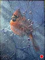 Cardinal by Joseph Yarnell Acrylic ~ 9 x 12