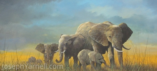 Pachyderm Parade by Joseph Yarnell Acrylic ~ 12 x 24