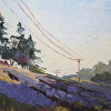 Pine and Lavender Hillsides
