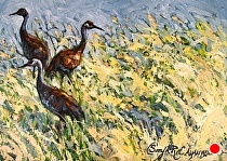 Sandhill Cranes on Pass Creek by Sonja Caywood Oil ~ 11 x 14