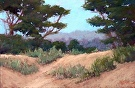 At the Edge of the Dunes, Carmel by  Portola  Art Gallery Pastel ~ 12 x 18