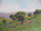 1415-2 Bay Area Spring Hills by  Portola  Art Gallery Acrylic ~ 24 x 30