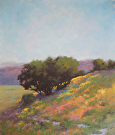 1415-Wild Flowers by  Portola  Art Gallery Oil ~  x