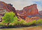 In the Canyon Lands by Curl by  Portola  Art Gallery Watercolor ~ 15 x 22