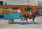 Mexican Maize Driver by Curl by  Portola  Art Gallery Watercolor ~ 15 x 22