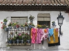Laundry and Flowerpots, Granada by  Portola  Art Gallery Photography ~ 16 x 20