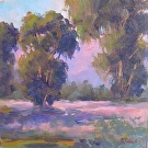 Stanford Eucalyptus by  Portola  Art Gallery Oil ~ 8 x 8