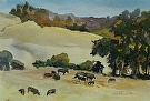 Cows on Route 84 by  Portola  Art Gallery Watercolor ~ 14 x 17
