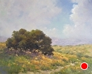 Palo Alto Oaks and Wildflowers by  Portola  Art Gallery Oil ~ 16 x 20