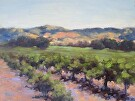 Napa Valley Vineyard by  Portola  Art Gallery Oil ~ 12 x 16