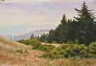 On Windy Hill by Curl by  Portola  Art Gallery Watercolor ~ 15 x 22