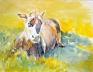 Yellow Cow by  Portola  Art Gallery Watercolor ~ 14 x 17