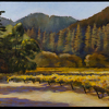 "Russian River Vineyard by Beverly Bird Acrylic ~ 22"" x 30"""