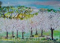 """Apple Trees in Bloom"" by Linda Carr  ~ 5.5"" x 8.5"""