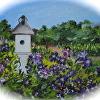 Summer Purple Clematis Blooming