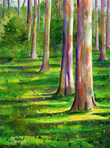 Kennedy Grove - Watercolor