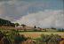 Summer Afternoon by Richard Owen