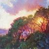"""Splendor of Dawn"""