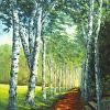 Birch Alee, St. Gaudens