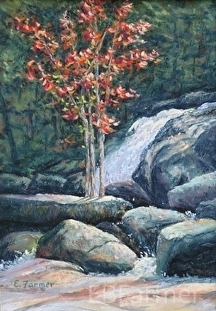 Holding Ground by Elaine Farmer Pastel ~ 9 x 6.25 image size