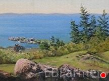 Monhegan View by Elaine Farmer Oil ~ 6 x 8