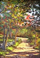 Back Road (Perry Rd) by Elaine Farmer Oil ~ 7 x 5