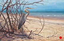 Bird Watching by Elaine Farmer Oil ~ 16 x 24