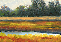Marsh by Elaine Farmer Oil ~ 2.5 x 3.5