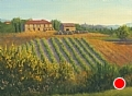 Tuscan Vineyard by Elaine Farmer Oil ~ 8 x 10