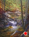 Pools of Color by Elaine Farmer Oil ~ 20 x 16