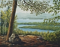 Lake Winnipesaukee from Mt. Major by Elaine Farmer Oil ~ 16 x 20