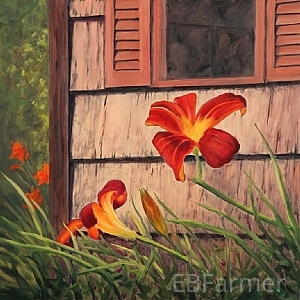 Daylilies at the Shed by Elaine Farmer Oil ~ 12 x 12
