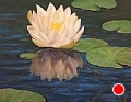 Waterlily Up-Close by Elaine Farmer Oil ~ 11 x 14