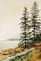 Acadia Mist by Elaine Farmer Watercolor ~ 10 x 7