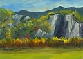 Cathedral Ledge, NH by Elaine Farmer Oil ~  x