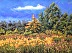 Wildwood Metropark in September by Mary Jane Erard