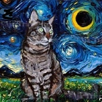Mary Jane Erard - Pet Portraits in the Starry Night