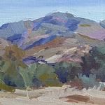 Pat Kelly - January Landscape Critique Group