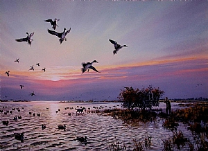 Prints-waterfowl