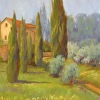 LeLodele summer colors, olive trees